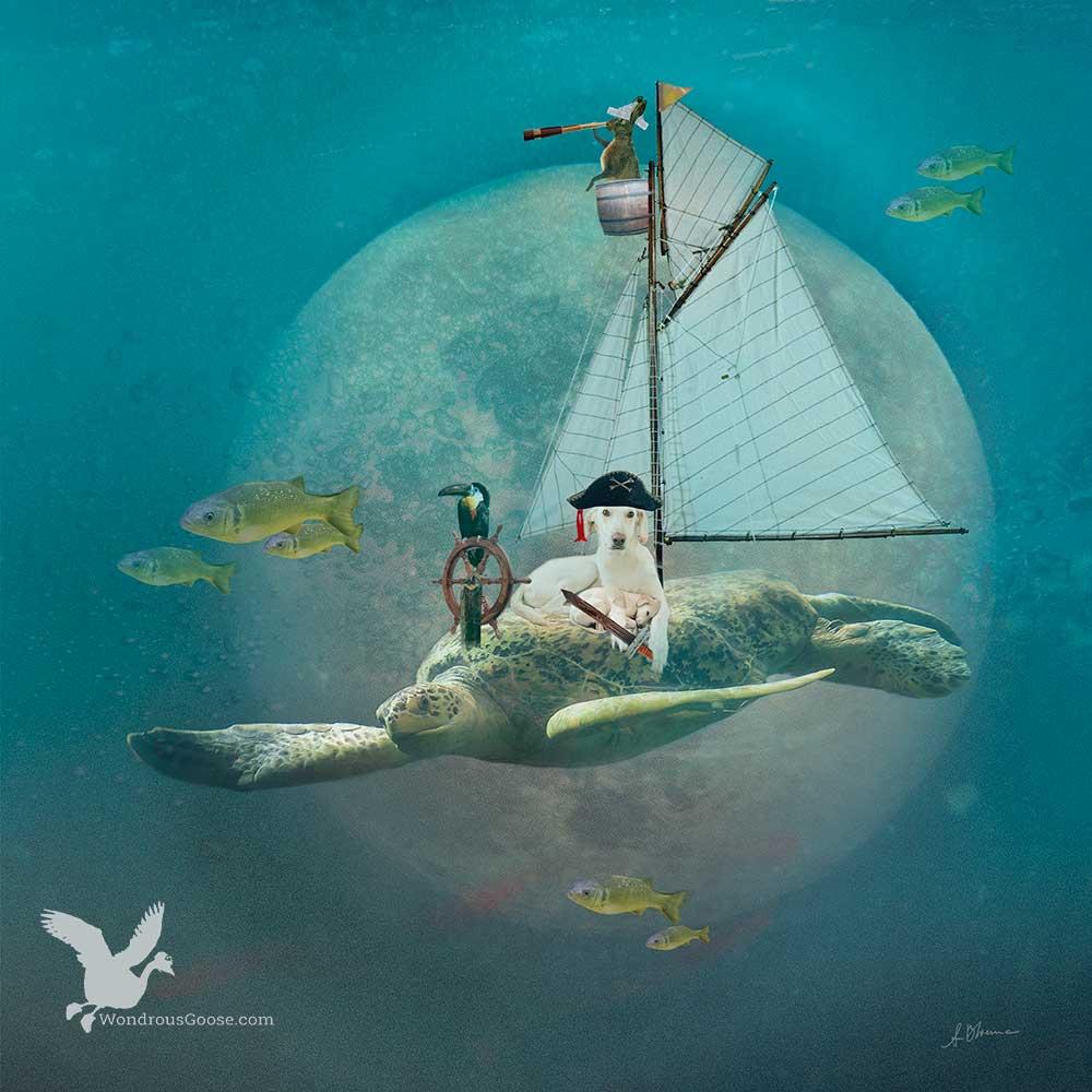 Sweet-Pirate-blog-Wondrous-Goose